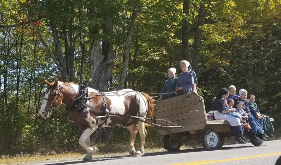 Maine's Amish community plans to renew farm lifestyle after expanded into Wales