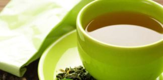 Green tea: A key to reduce antibiotic resistance but how exactly does it work?
