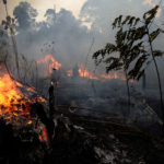 The Amazon fires a crime against humanity
