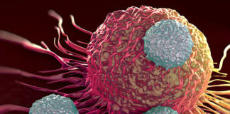 Studies identified new therapeutic targets to help patients with lung cancer