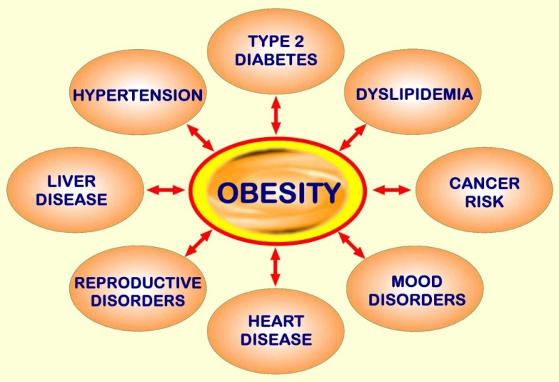 Obesity and Risk of Type 2 Diabetes and Cardiovascular Disease in Children and Adolescents