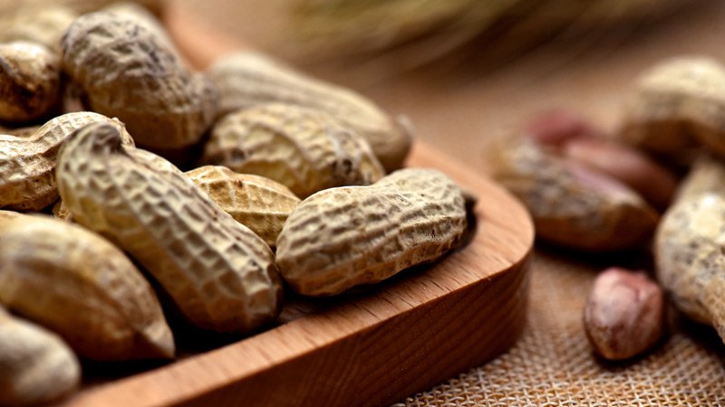 FDA OKs: First Ever Peanut Allergy Drug, Here's the theory