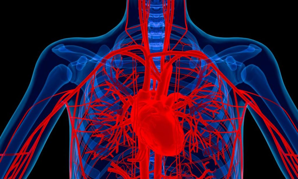 After Heart Attacks-Rheumatoid Arthritis Drug May Help Repair Heart