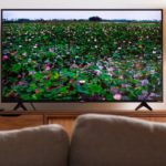 Looking for Picture Quality without going out of Budget? Here are the best 4K TVs