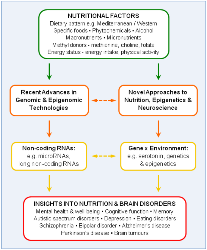 New Epigenetic Insights into the Brain leading New Approaches to Neurological Diseases, Here's the theory