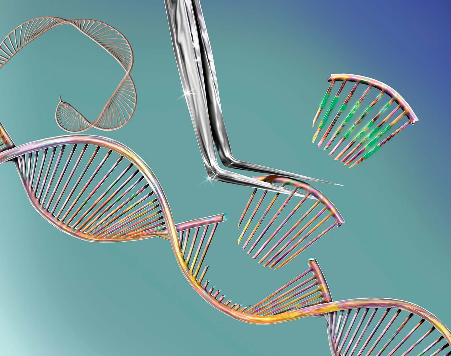 New, More Powerful Technique To Edit Genes Revealed : Here's the details