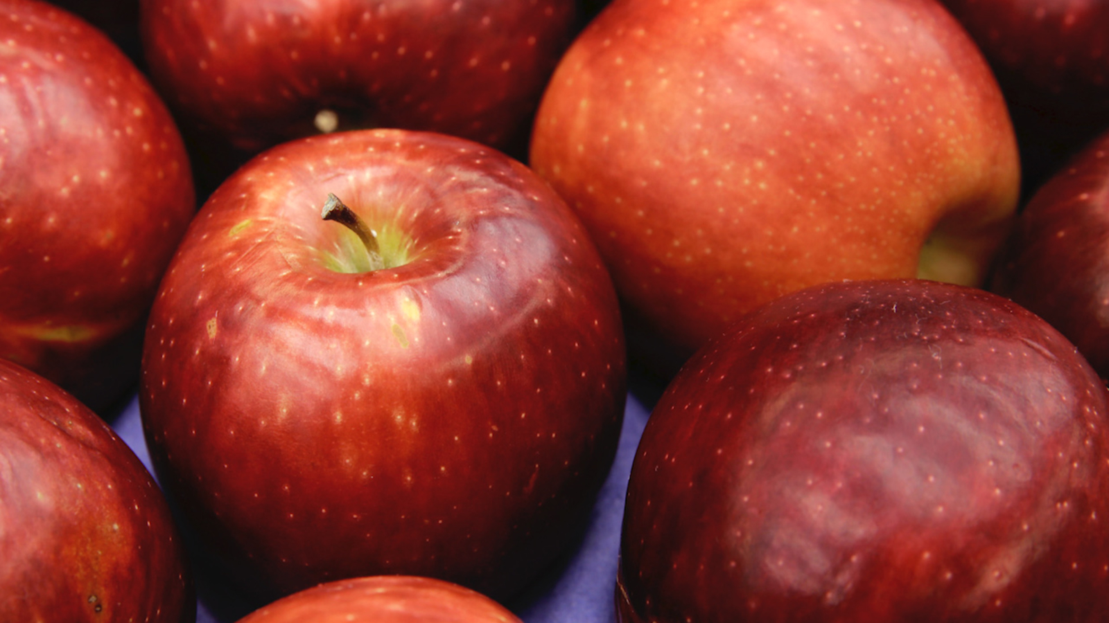 Cosmic 'Ultra-crisp, very juicy' apple variety to debut in stores in December