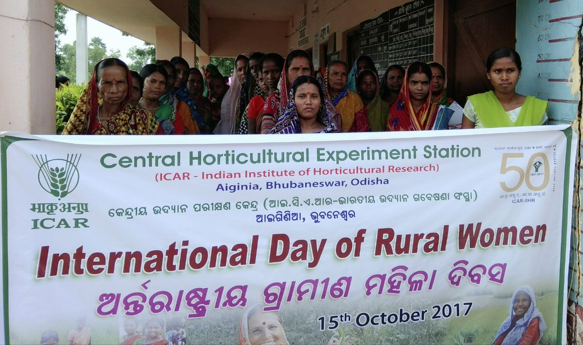 What's the need to celebrate International Day of Rural Women?