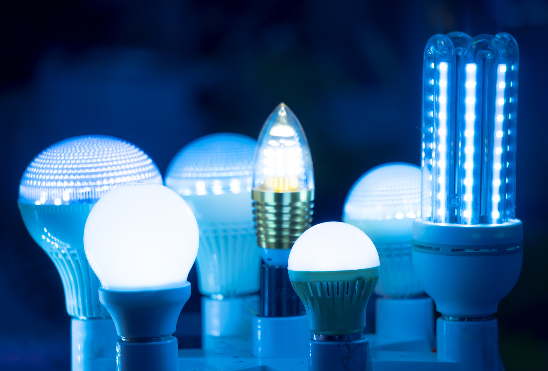 LEDs Blue Light Can Rot the Brains of Fruit Flies: