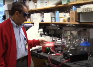 """""""Phototherapy"""" : Effective for treating carbon monoxide poisoning in rats"""