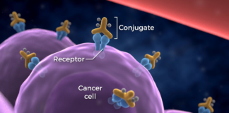 Cancer immunotherapy boosted by two new Yale studies: Here's the theory.