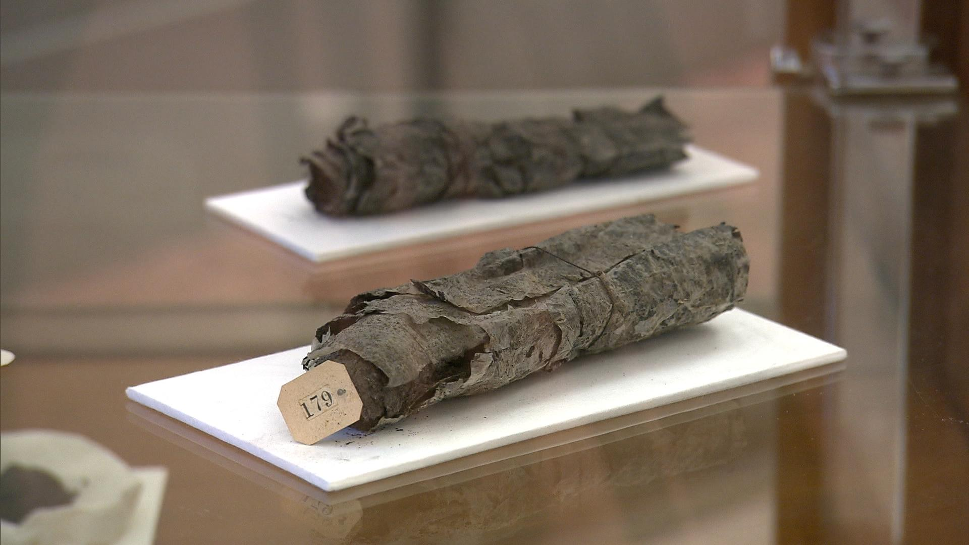 Scientists Are About to 'Unravel' Vesuvius's Ancient Papyrus Scrolls