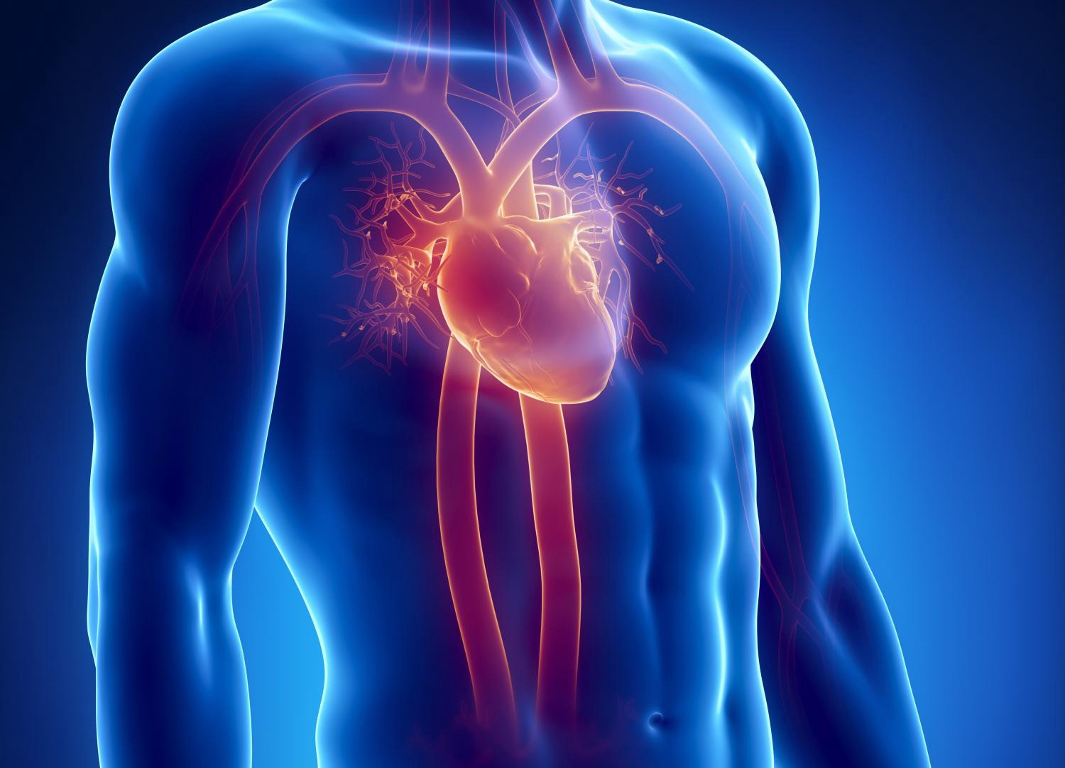 Electronic-cigs may Damage the heart Crucially : Finds study