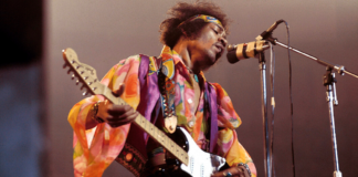 JIMI HENDRIX NOT RESPONSIBLE FOR BRITAIN'S PARAKEETS REVEALED