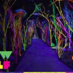 Meow Wolf Is Set To Release Their Spring Edition Of Dark Place