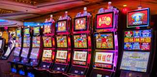 brave these 5 adventure-themed slots