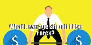 Leverage to Use in Forex